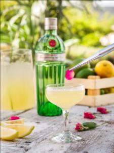 Frangance Martini