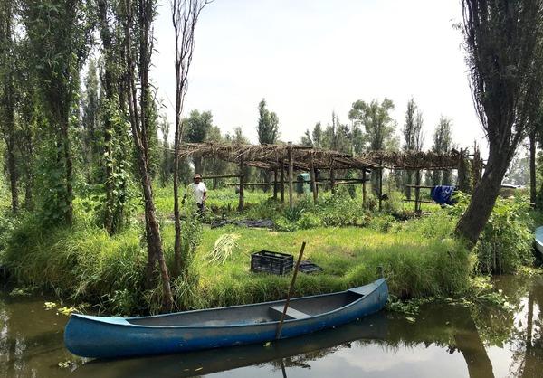 Ricard Camarena se apoya en una red de   agricultores locales para Canalla Bistro México